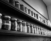 Jars of preserved food